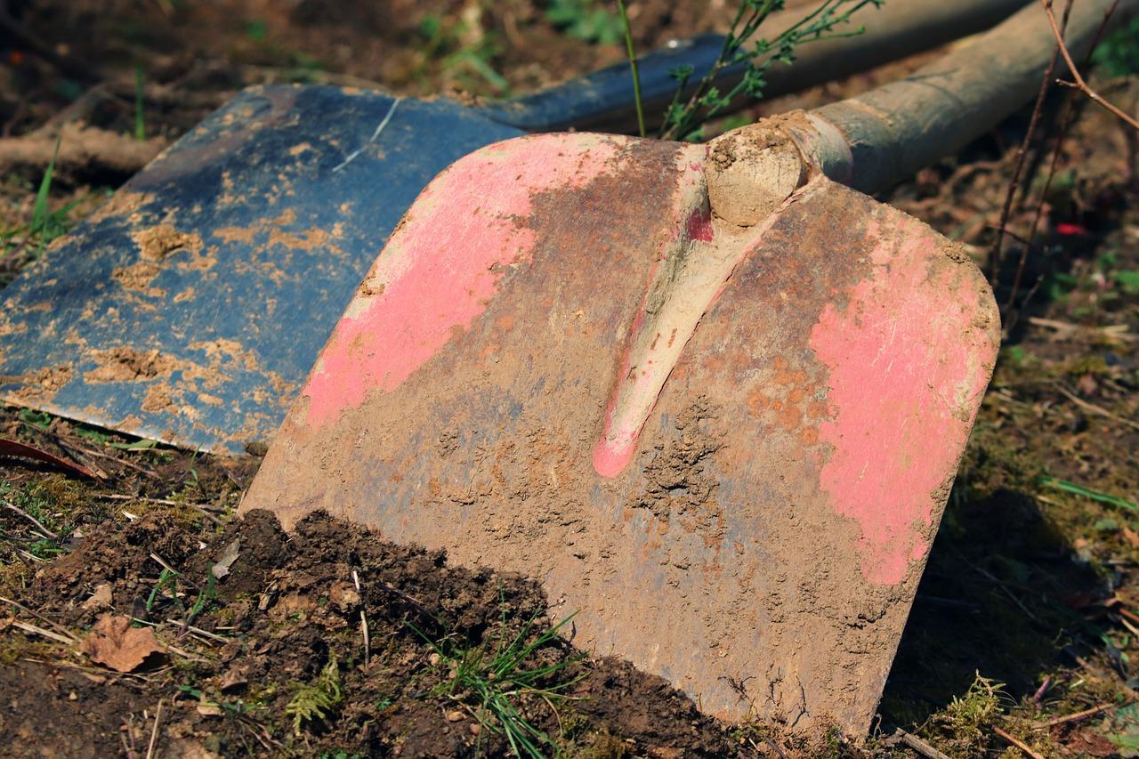 Jakie narzędzia warto mieć w ogrodzie?